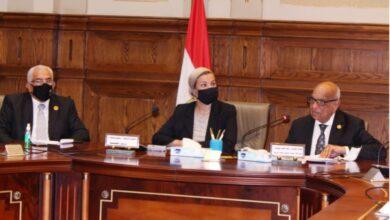 وزيرة البيئة نعمل على أربع محاور للقضاء على التلوث والحفاظ على البيئة و مواردها