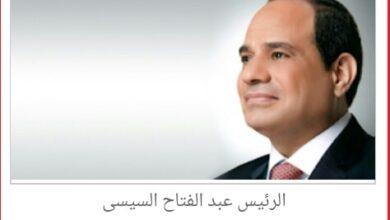 الرئيس عبد الفتاح السيسى رئيس جمهورية مصر العربية